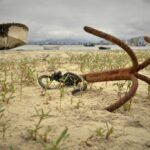 Âncora na areia